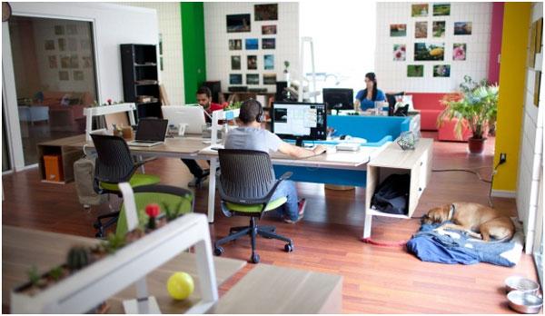 Ambiente com Colaboração Através da Arquitetura Corporativa
